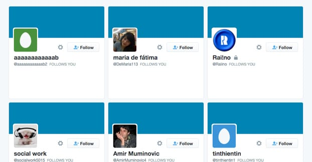 Fake Twitter Follower Examples