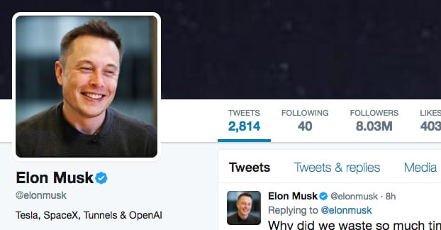 Elon Musk Follower Ratio
